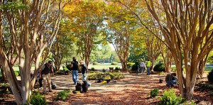 Support the Overton Park Conservancy